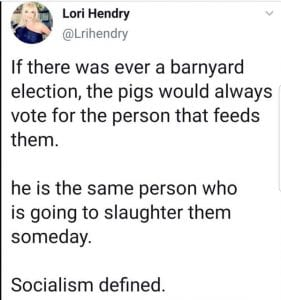 pigs and elections
