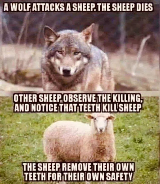 sheep and wolf teeth analogy